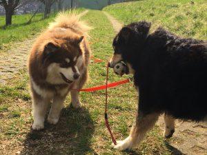 Nunna & Yuka